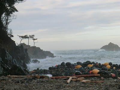北上町小滝にある浜。たくさんの浮が打ちあがっていますが、これでも漁業従事者による回収作業で1/3にまで減った姿です。