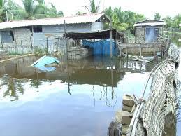サイクロンの影響で雨水に浸かる住宅(ジャフナ県)