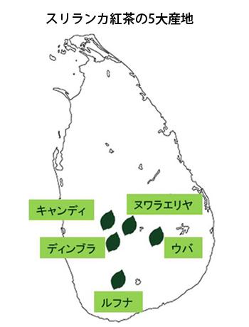 スリランカ紅茶の5大産地