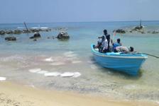 スリランカジャフナ 内戦後帰還漁民を訪ねる旅