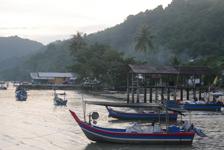 マレーシア ペナン マングローブを植える旅