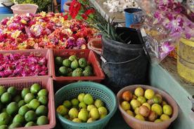 フルーツや花を売るお店