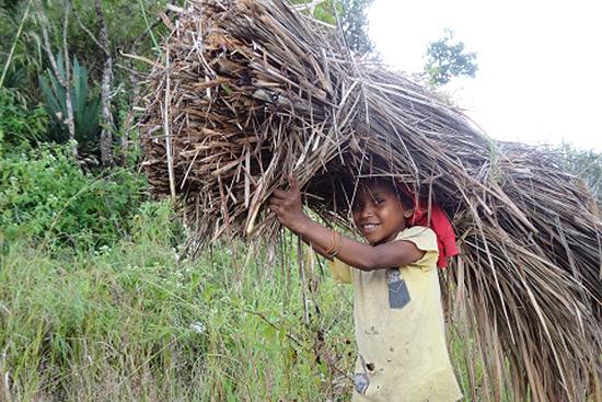 屋根葺き替え用の藁(草)を運んでいる子供
