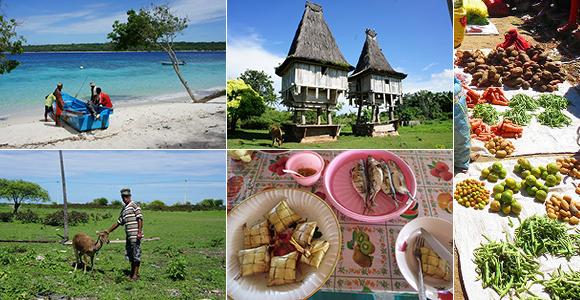 東ティモール エコツアー2014 ~東ティモールの大自然と食文化を巡る旅~