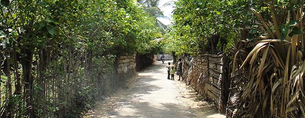 スリランカ北部 少数民族・タミルの伝統文化に触れる旅 2014