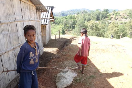 原料の家畜糞を運ぶ手伝いをする子供たち