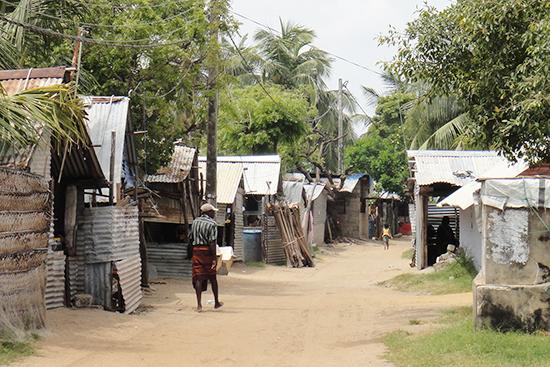 コクライ村のシンハラ人居住地域