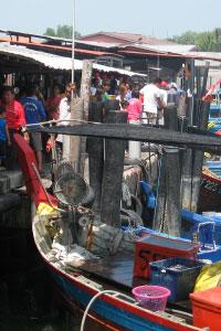 ペナンの魚市場