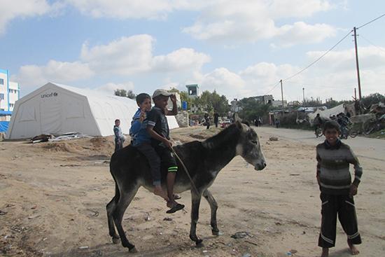 gaza20141212_a