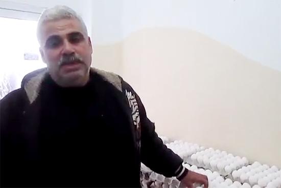 ガザの養鶏所で働くアシュラフさん