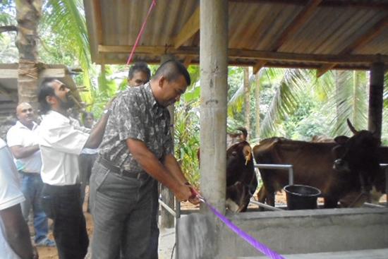 オープニングのテープカットは、政府紅茶研究所のデニヤヤ所長