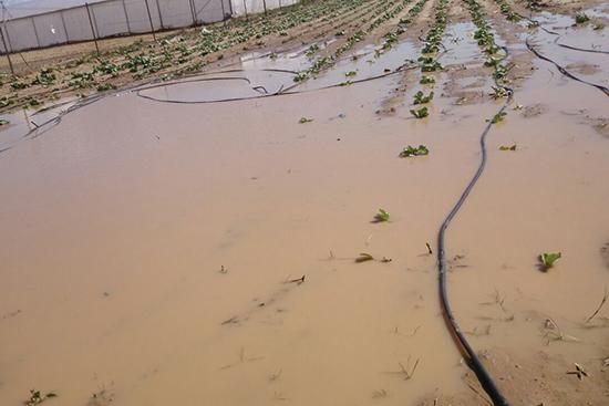 水に使ってしまった農地