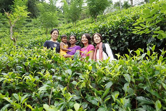 スリランカ おいしい紅茶のルーツを訪ねる旅 <参加者募集>