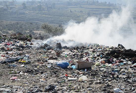 ゴミの集積場となっている空地。 すぐ傍にはオリーブの木も見える。