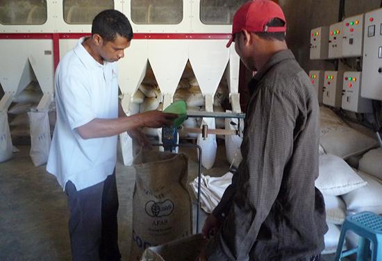 コーヒー豆の計量チェックをする工場長のネルソン