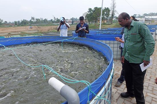養殖開発センターでも簡易な飼育槽を使用していました