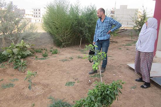 生まれて初めての家庭菜園、近所のトルコ人の農家からアドバイスを受け、トマト、ナス、キュウリを栽培。