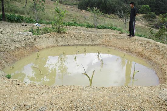ため池ができあがっていました