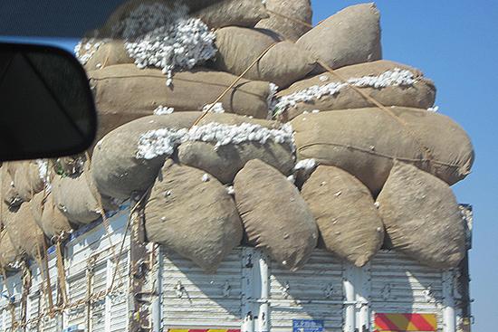 トラックに積まれた綿