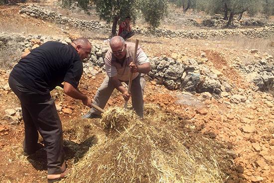 床材づくりを行う農家組合メンバー