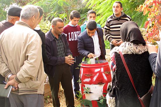 ドラム缶から作られた植木鉢には何種類もの植物が植えられている。中央の筒に水を張ると、一度に水やりが完了してしまうという仕組み。
