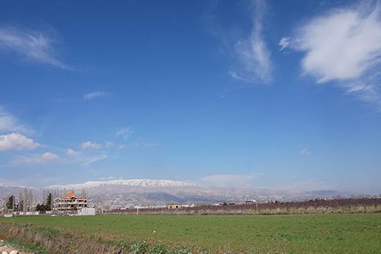 冠雪したレバノン山脈。ベカーの年間平均気温は15・4度で、昼夜の温度差が大きく、ローマとほぼ同じ気候です。レバノンの国土は約10,400平方キロメートルですが、地中海岸の温暖な気候、山岳部や高原地帯の涼しい気候と変化に富んでいます。