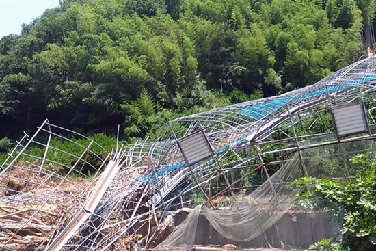 愛媛県における西日本豪雨被災者支援を開始しました
