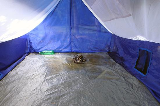 見せてもらったテントの中の様子