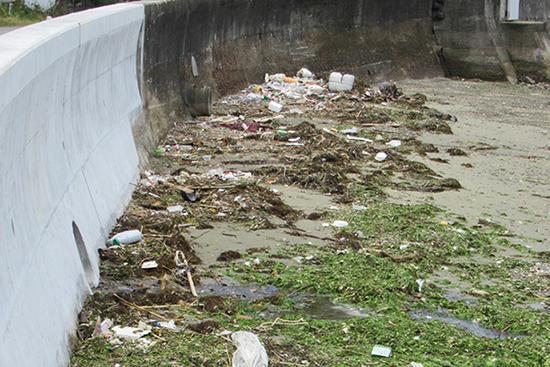 清掃前と比べると大分きれいになった海岸。回収されたごみの量はなんと全部で約2トン!