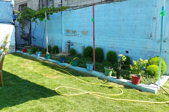 拡張された庭の花壇。鳥の水やり容器をリサイクル