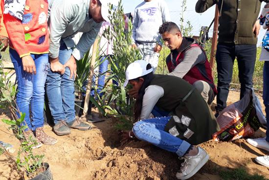 大きな木を植える際にお父さんたちが大活躍